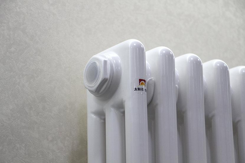 太阳花碳纤维散热器 年末特价238元/片