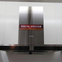 方太电器 200-EM02T 油烟机