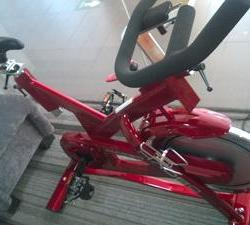 生命动力 动感单车家用静音健身车超静音包邮减肥器材健身器材室内单车