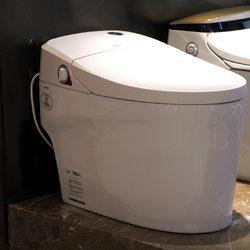 法恩莎卫浴 FB16165 智能座便器