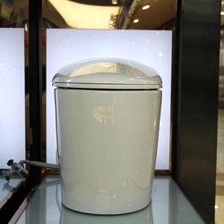 法恩莎卫浴 FB16163 智能座便器