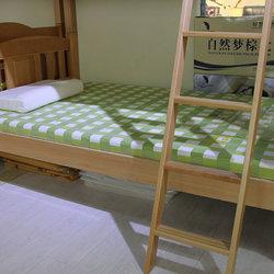 自然梦 无味系列-自然舒无味A 植物弹性床垫