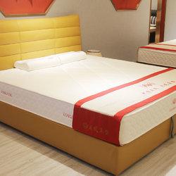 龙凤 9002床+经典床垫